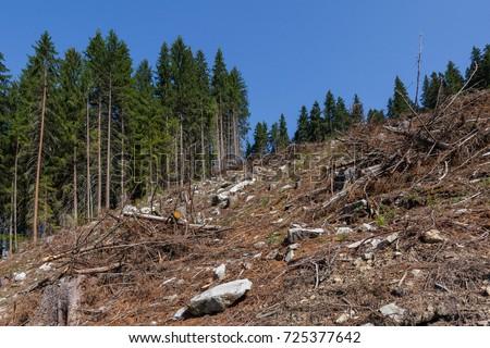 causes of environmental degradation pdf
