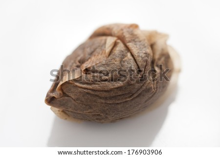 A used teabag on a white background - stock photo