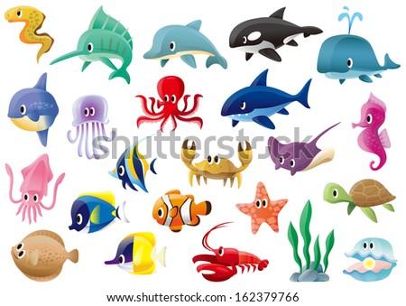 A variety of marine organisms - stock photo