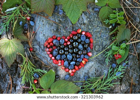 Variety Wild Berries Shape Heart Symbol Stock Photo Royalty Free