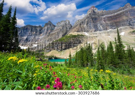 A variety of wildflowers in a meadow overlooking a glacial pond in northern Montana - stock photo