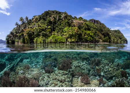 A vibrant coral reef grows near an island in Raja Ampat, Indonesia. This remote tropical region harbors an extraordinary amount of marine life and offers world class scuba diving and snorkeling. - stock photo