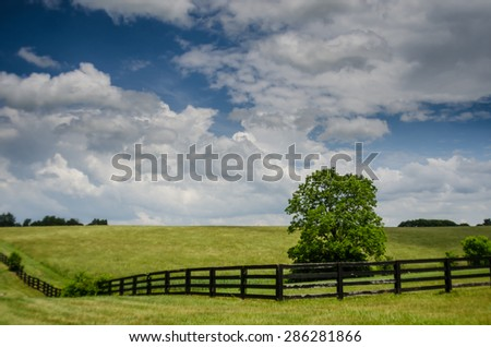 A vibrant green horse field on a summer afternoon in rural Kentucky - stock photo
