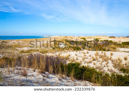 A view across the dunes along the Delaware shore in Lewes, Delaware. - stock photo