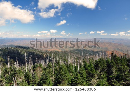 A view from atop Clingman's Dome in the Smokey Mountains. - stock photo