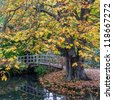 A view of a Japanese style bridge, framed by a horse chestnut tree. - stock photo