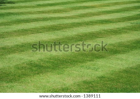 A view of a neatly mown lawn, 45 deg to the stripe - stock photo