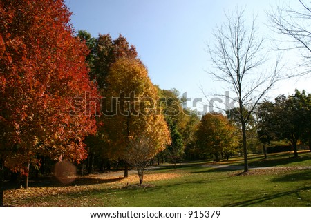 A view of a park in Fall - stock photo