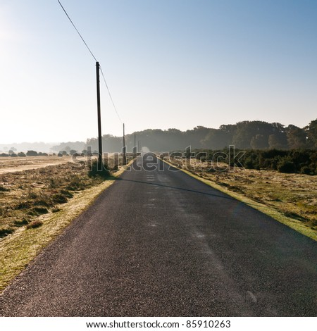 A view of a straight road in the New Forest national park, Hampshire, UK.