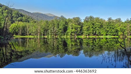 A view of a tranquil lake with trees reflection in water, Gosh, Armenia