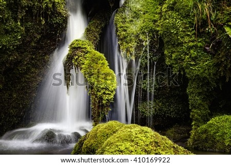 a view of a waterfall in a wood