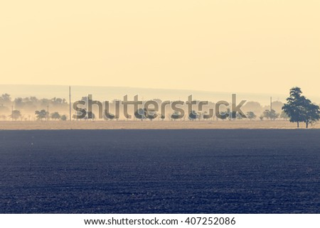 A view of agricultural fields and trees in the distance. Toned - stock photo