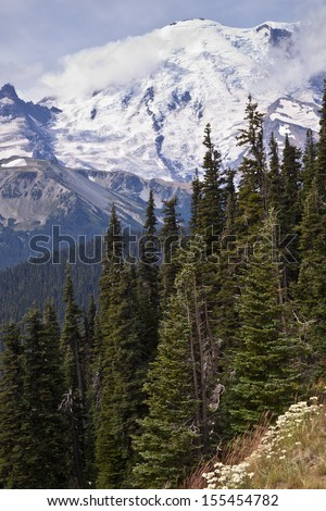 A view of Mount Rainier through the forest - stock photo