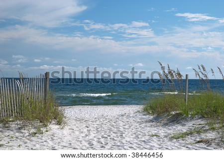 A view of the Florida gulf coast with sea oats in the foreground. - stock photo