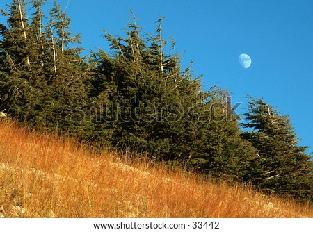 A view of the moon from the mountain