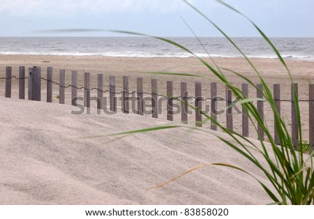 A view of the ocean framed by dune grass - stock photo