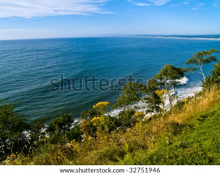 A view of the ocean from a cliff with trees and plants growing on the cliffside.