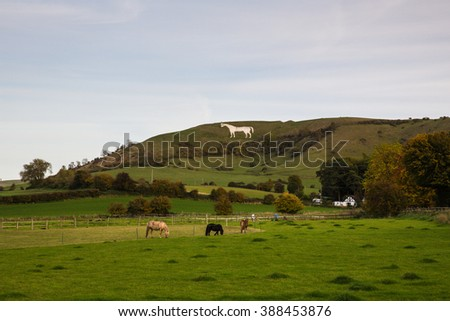 A view of Westbury white horse hill & the farm nearby