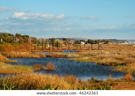 a view of wetlands in Torredembarra, catalonia, spain