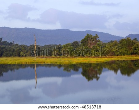 a view over dunawila wewa lake in wasgomuwa national park sri lanka