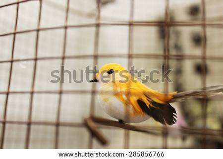 A vintage bird in a cage - stock photo