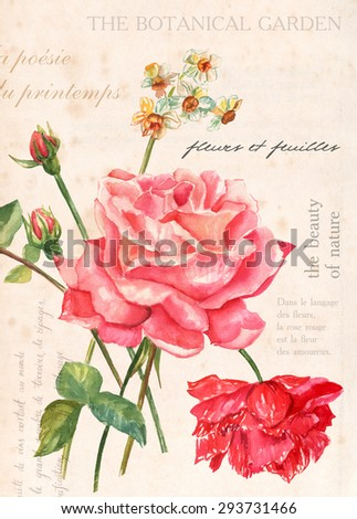 A vintage collage poster with a bouquet of roses and other flowers and texts about flowers, leaves, roses and wine in English and French; a background texture or a postcard template - stock photo