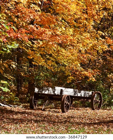 a vintage wagon surrounded by fall color