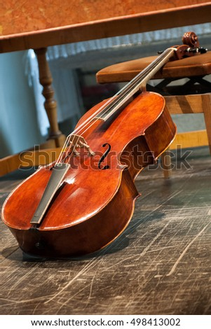 A viola posed on a chair.