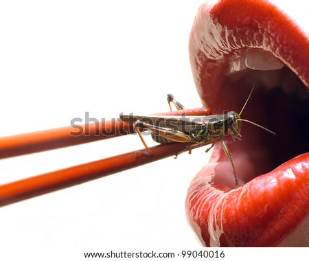 a wacky take on sushi, red lips getting ready to eat a live grasshopper with chopsticks - stock photo
