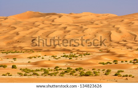 A wadi in the Rub al Khali or Empty Quarter. Straddling Oman, Saudi Arabia, the UAE and Yemen, this is the largest sand desert in the world. - stock photo