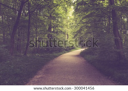 A walk in the Park, around the leaves, flowers, green trees, meadows. The soul rests. nature background. blurred and bokeh. Nature sends rich and deep colors. no people. Summer, spring away day - stock photo