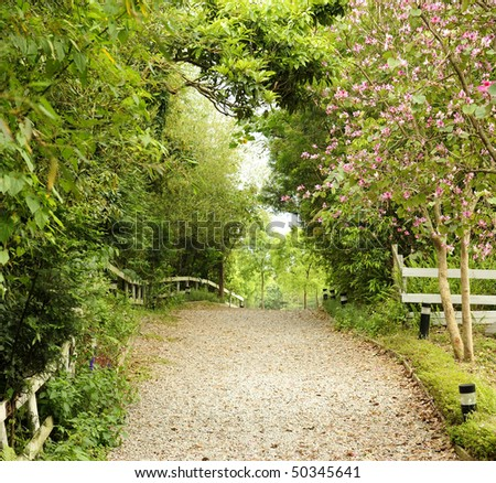 a walkway with beautiful scene in the park - stock photo