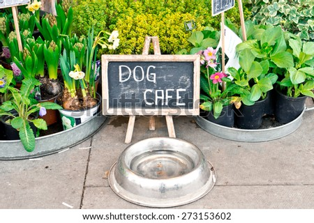 A water bowl for dogs and a sign at a florist shop in the UK - stock photo