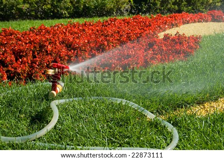 A water sprinkler irrigating grass and flowers - stock photo