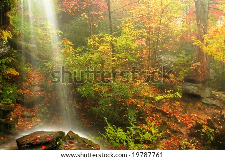 A waterfall captured during fall of the year while the fog rolls in on a rainy day. Used a long shutter speed to get a cotton candy effect on the water. - stock photo