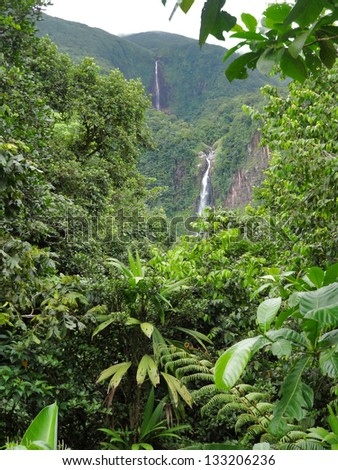 a waterfall in lush vegetation on a caribbean island named Guadeloupe - stock photo