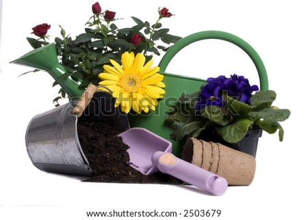 A watering bucket with a rose and all the gardening tools to plant it. - stock photo