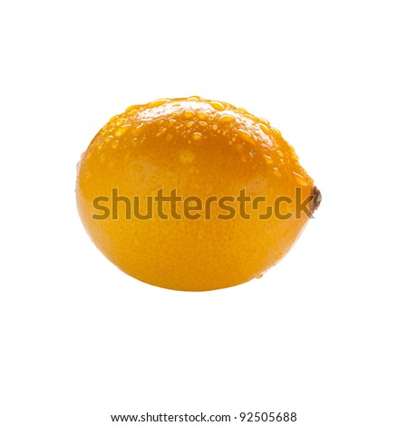 A wet Meyer Lemon isolated on a white background.