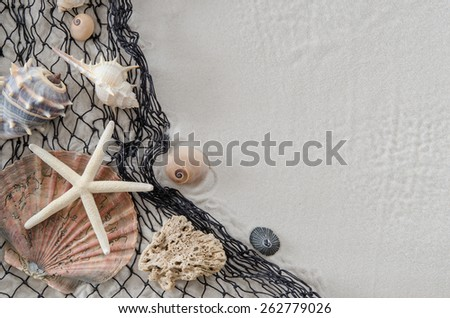 A white starfish and various sea shells on a black fishing net on a white sand beach with copy space - stock photo