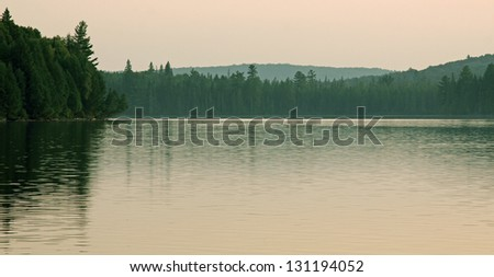 A wide-angle view of the treeline of Otterslide Lake in Algonquin Provincial Park, in Ontario, Canada.