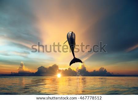 lake cormorant single men Online dating in memphis for free  i enjoy it is one that gives me the fr lake  cormorant mississippi boatloader 61 single man seeking women meet singles.