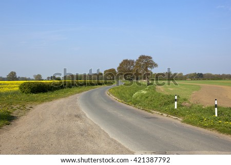 a winding country lane in springtime with wheat and oilseed rape crops hawthorn hedgerows and oak trees under a blue sky - stock photo
