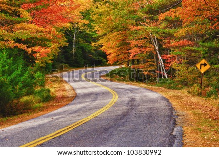 A winding road curves through autumn trees in New England - stock photo