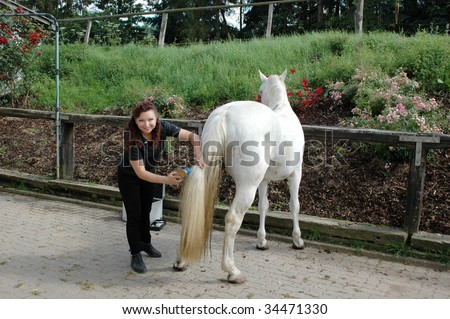A woman  combs the long tail of the horse.