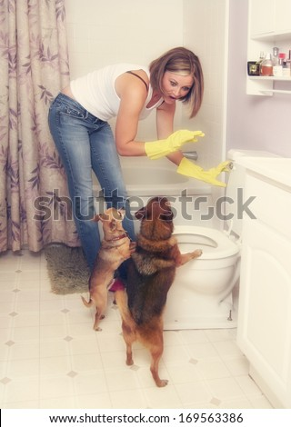 a woman flushing something down the toilet in front of two dogs - stock photo