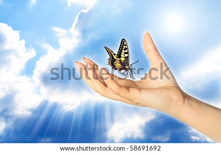 a woman hand and butterfly over a blue sky with rays of light like a concept for spiritual symbol of soul - stock photo