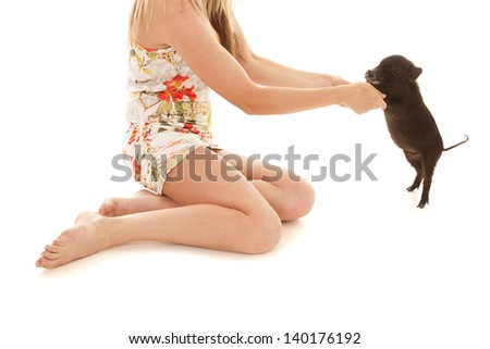 a woman holding up her pet pig. - stock photo