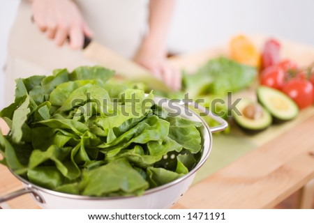 A woman prepares a fresh organic salad. Large butter lettuce in focus puts less emphasis on human figure. Great for adding your own type - stock photo