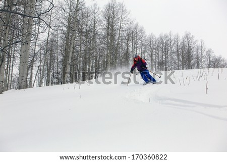 A woman skiing in a aspen grove on a stormy day, Utah, USA. - stock photo