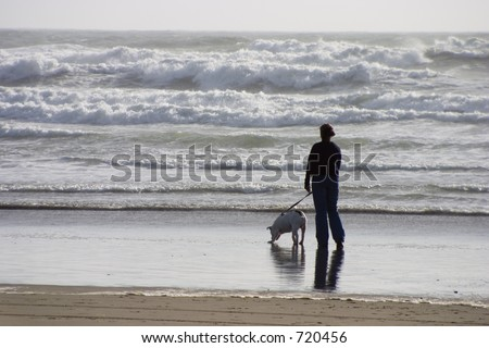 A woman walks along the shorline with her dog.